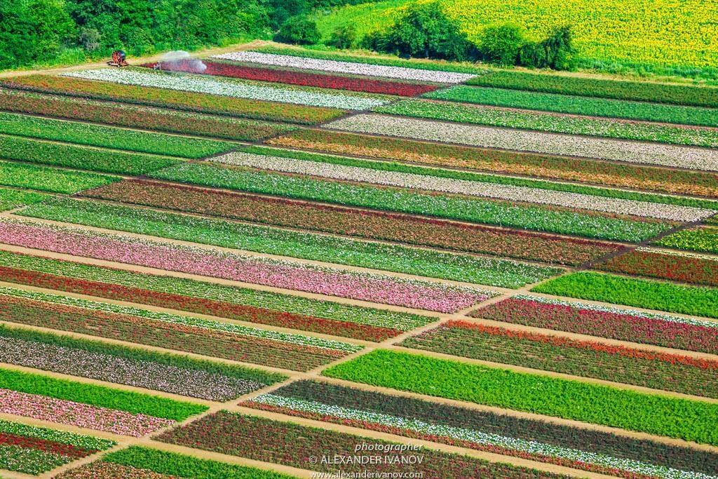 Красиви снимки от България - Казанлък