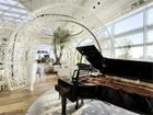 пиана FEURICH