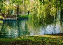 """Езерото """"Ариана"""""""